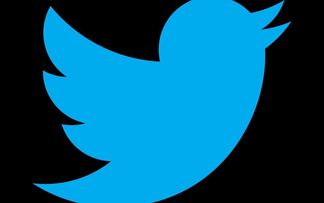 Twitter, l'uccellino più famoso nel mondo del Web